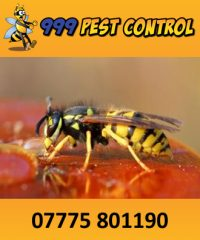 999 Pest Control Ltd