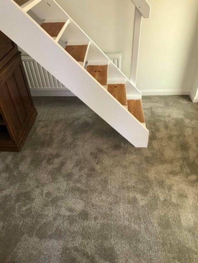Kingsmead easy clean New Majesty carpet to hallway