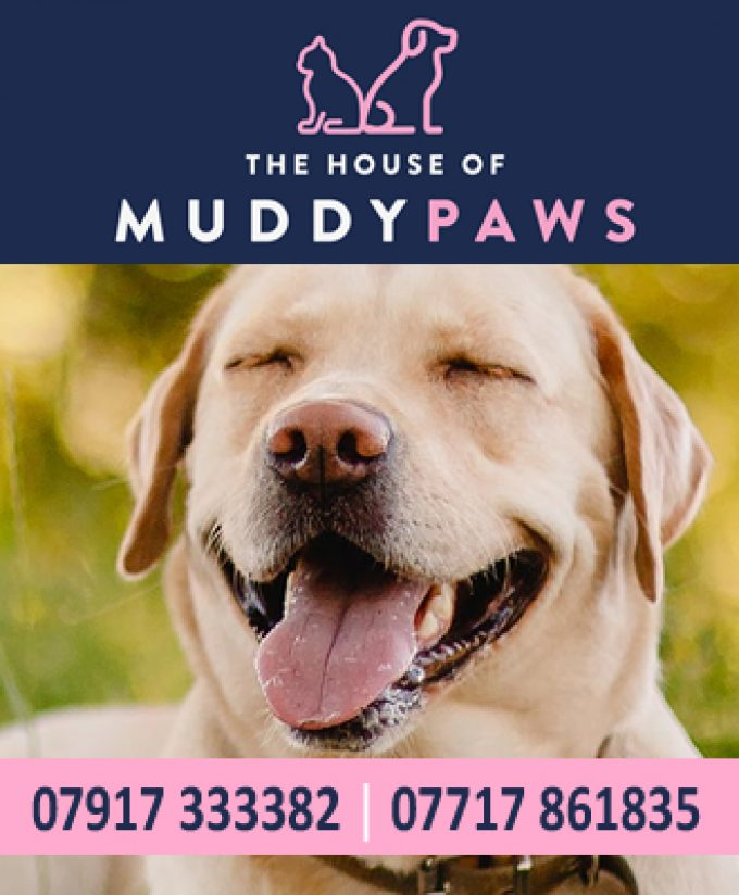 The House of Muddy Paws