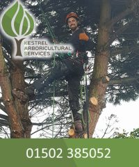 Kestrel Arboricultural Services Ltd