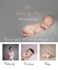 Little Works of Art Photography