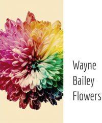 Wayne Bailey Flowers